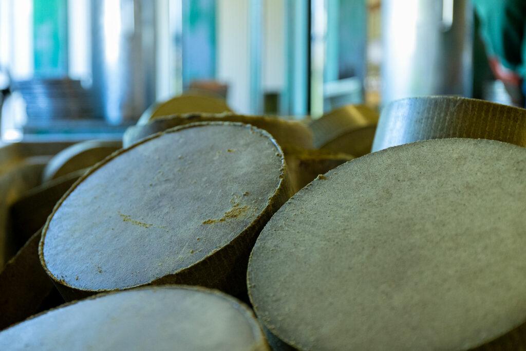 Produktion Steiraöl - Gepresse Kürbisscheiben